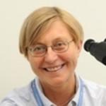 Dr. Jitka Persinova, MD