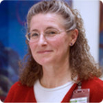 Dr. Anne V Hing, MD