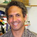 Dr. Michael Alan Teitell, MD