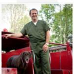 Dr. Brit E Bowers