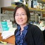 Dr. Liwei E Huang, MD