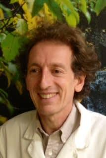 Pieter A Van Heule, DC Acupuncture
