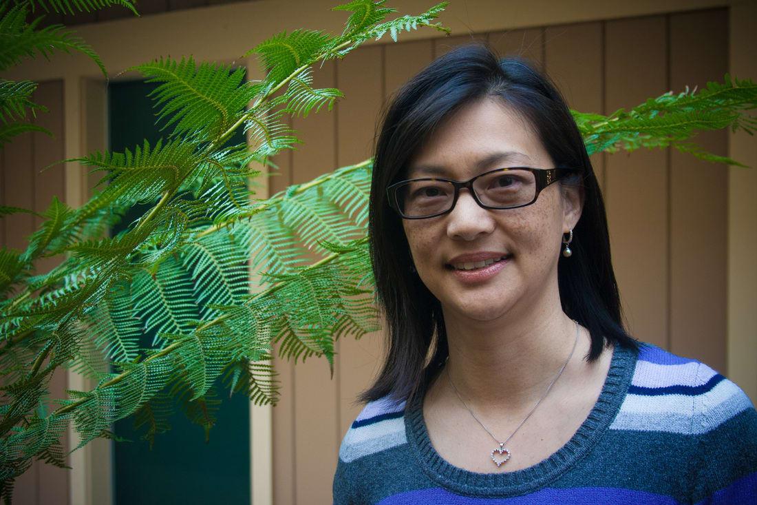 Mary Ann C Shui, OD Optometry