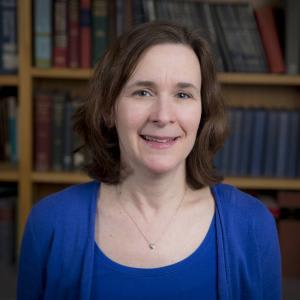 Dr. Lori A Benjes MD
